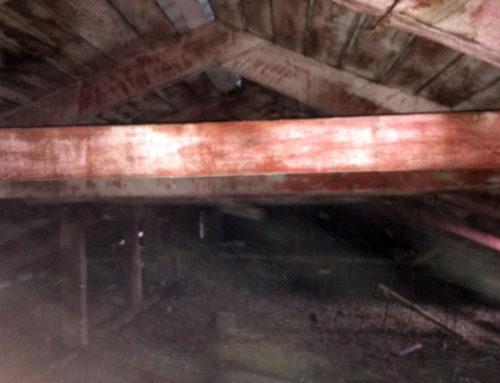 Огнезащита деревянных конструкций детского сада №5 г.Севастополь